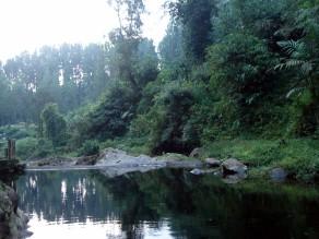 Silent Lake Baturaden