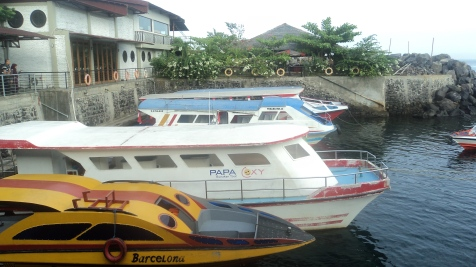 Marina Sea Port(Manado)